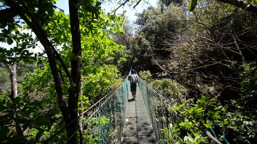 Hiking Adventure Costa Rica
