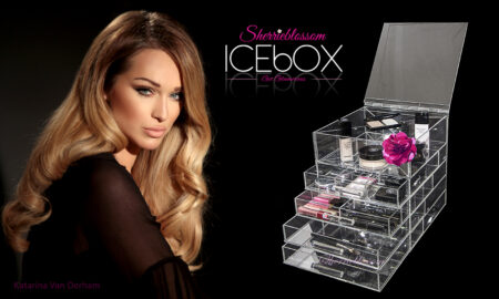 Beauty Room Organization with the ICEbOX