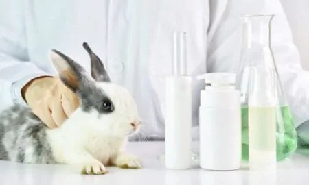 Cruelty-Free Beauty Brands Are Finding Ways to Get Around China's Animal-Testing Policies