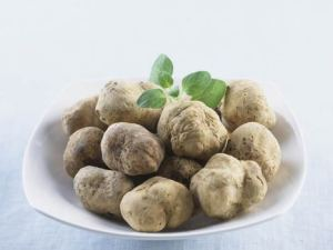 Picture of White Truffles on plate