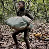 Chocolate, páscoa e trabalho infantil: Conheça as sete marcas de chocolate que utilizam trabalho escravo infantil
