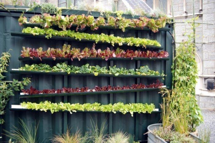 17 ideas para construir jardines verticales