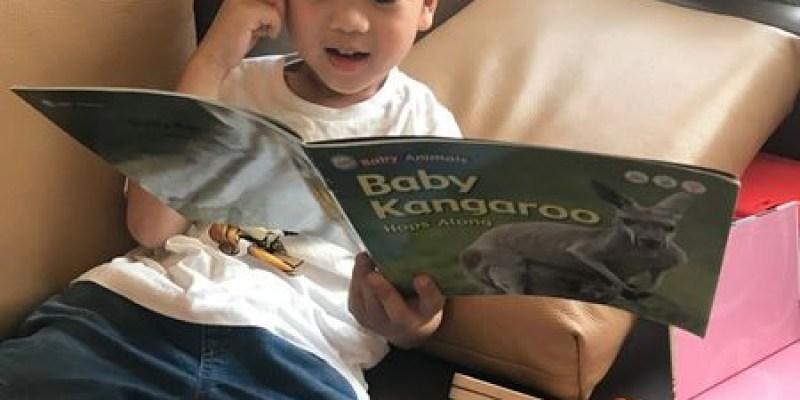 【書櫃】學齡前教育|幼兒教材|幼兒科普|New Baby Animals寶寶的第一套英語動物科普書|KidsRead點讀筆