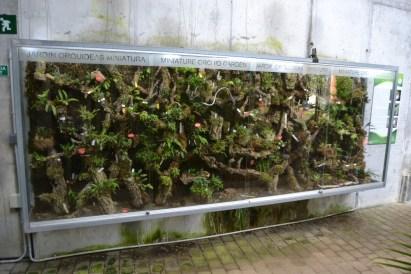 orchidarium, types of vivarium