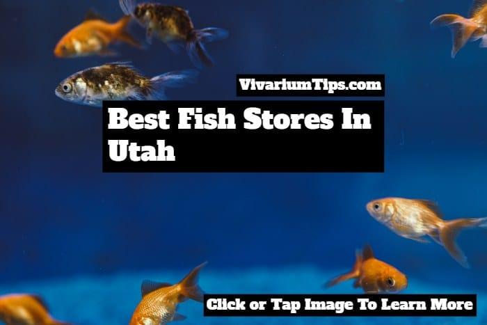 best fish stores in utah