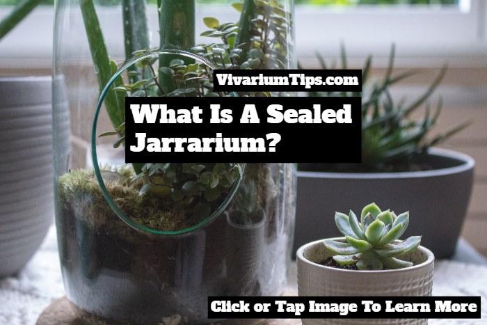 What Is A Sealed Jarrarium
