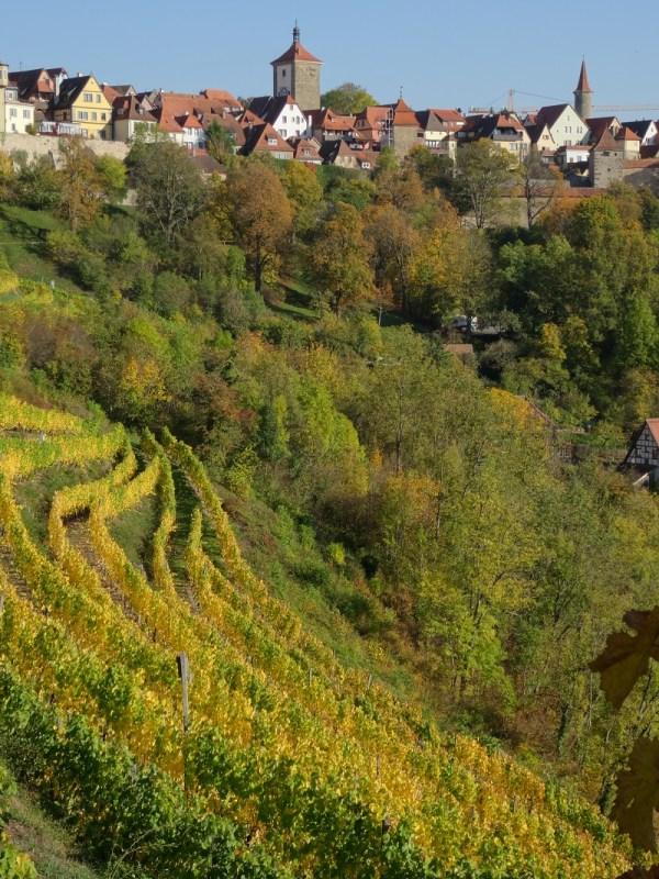 Viñedos de Rothenburg en la Riviera
