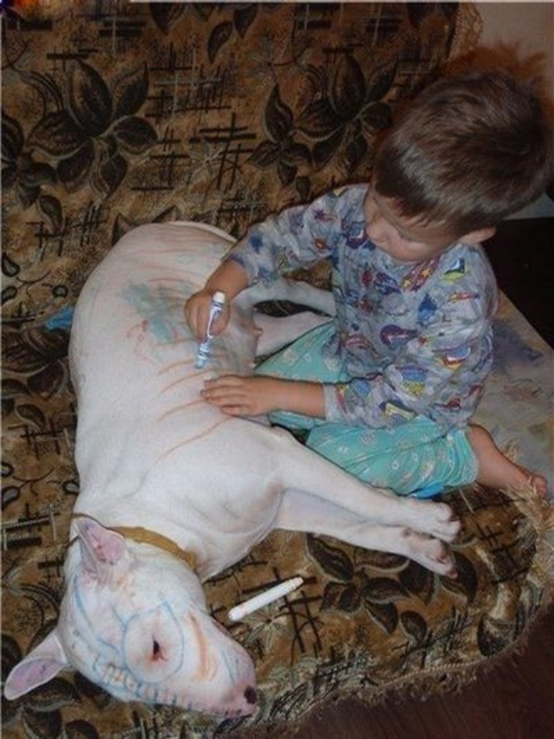 This dog that will serve as a canvas for this up-and-coming artist.