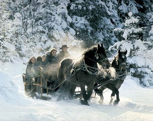 Or go on a horse-drawn sleigh ride.