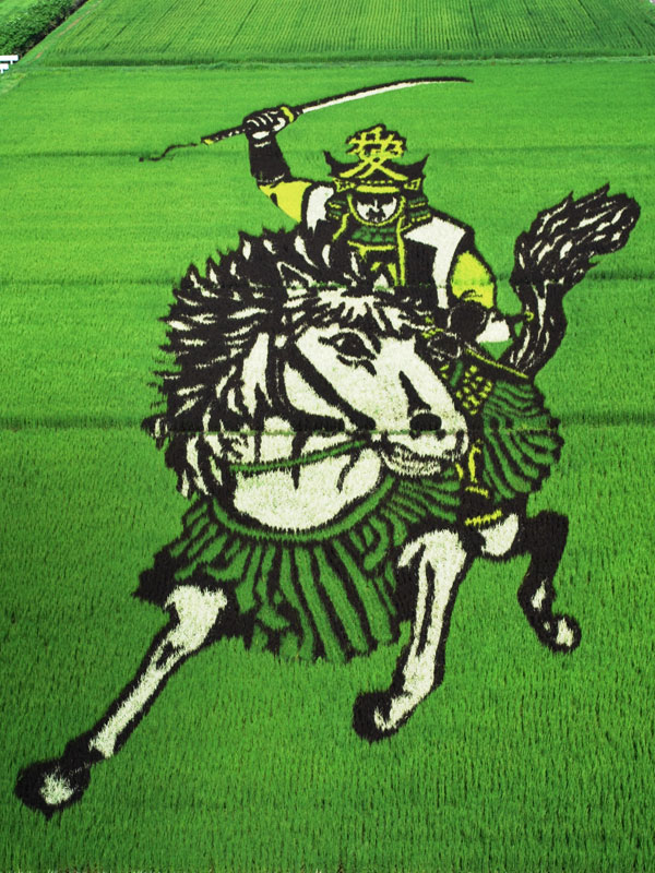 tanbo japanese rice field art (2)