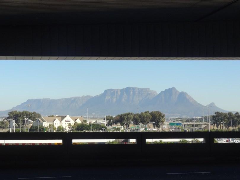 Primeiro contato com a montanha imponente! - Table Mountain