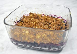 Picture of healthy no sugar added based organic wild blueberry crisp