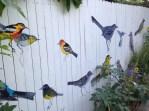 Julia Lunk's birds