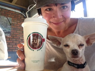 Me and Chicky having coffee at The Cup. See how I covered up the offensive Starbucks logo with their decal? Take that, Dad.