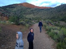 Hiking quickly at dusk to catch the bats leaving