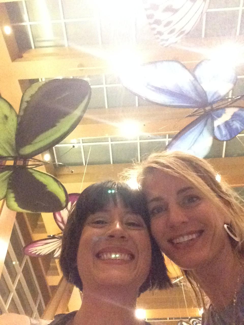 Butterflies at Aria