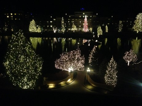 Gorgeous grounds lit up for the holiday