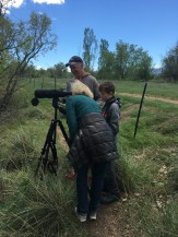 Checking out Wood Ducks on Itchy's new scope