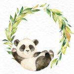 Panda portada OctopusArtis