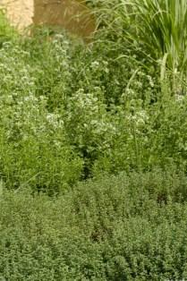 A exuberância do verão ©Divulgação/Sabor de Fazenda