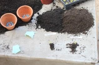 Substratos com e sem adubo ©Sabor de Fazenda
