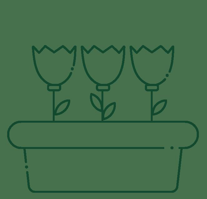 plantasexterior