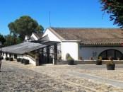 Xerez da Fronteira - Jerez de la Fronteira (70)