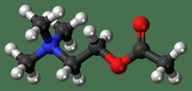 Neurotransmissores e influências externas