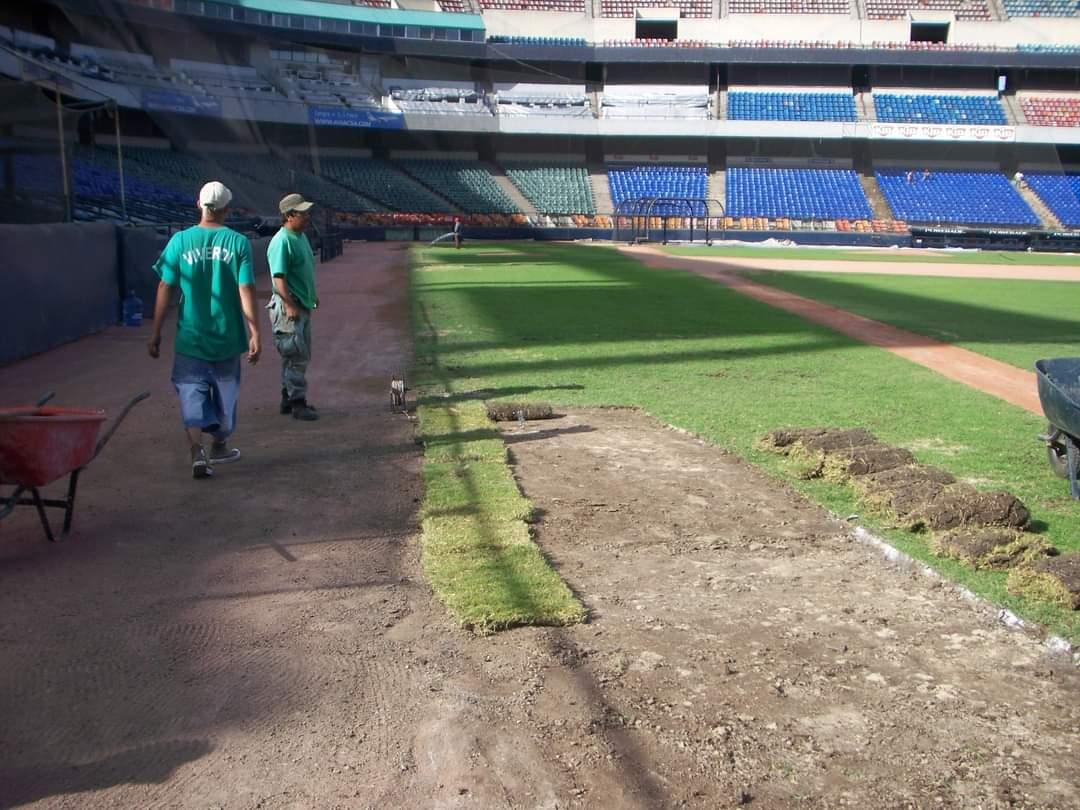 Estadio De Baseball Mty