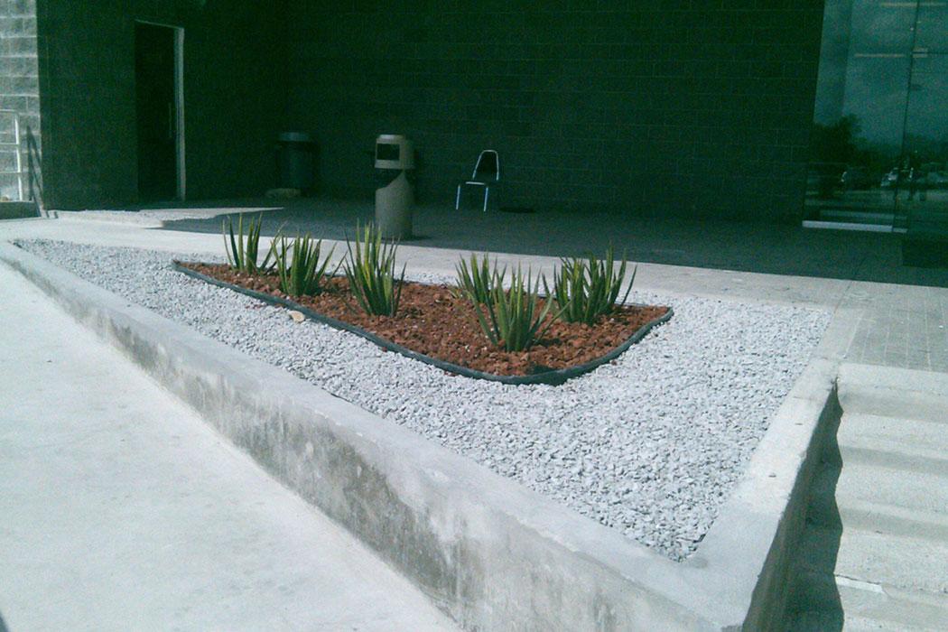 05- Viverdi México Jardinería y Fumigación - viverdimexico.com