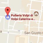 Polleria Volpi Lucca