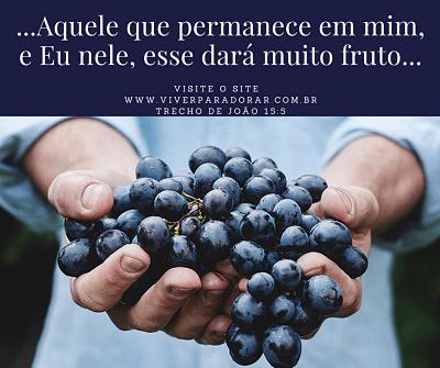 Ser frutífero, como diz em João 15:5.