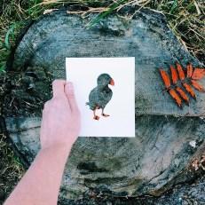 animals-silhouettes-natural-landscapes-nikolai-tolstyh-17
