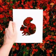 animals-silhouettes-natural-landscapes-nikolai-tolstyh-28