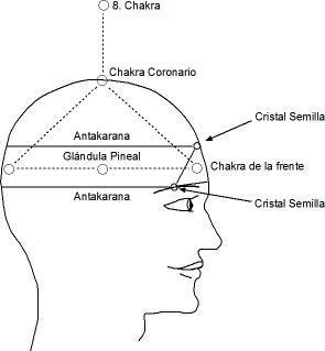 wpid-mapa+cerebro-2013-08-29-15-57.jpg