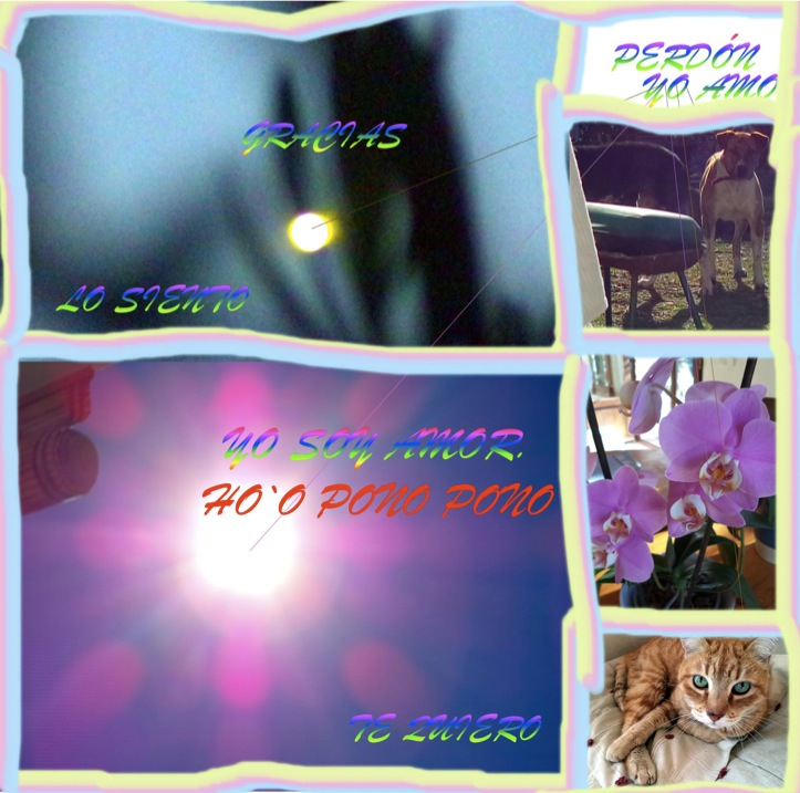 wpid-15214-2014-02-15-11-21.jpg