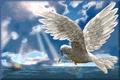 wpid-PastedGraphic6-2014-05-19-02-23.tiff