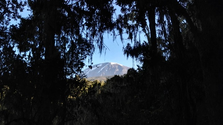 Kilimanjaro – Drømmen