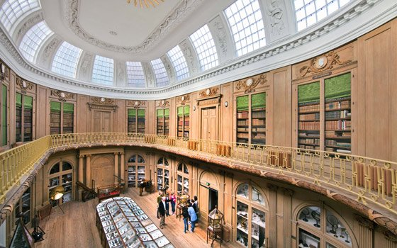 Le più belle opere di Rembrandt al Teylers Museum di Haarlem