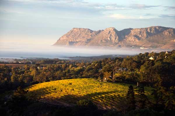 Dieci cose da fare in Sudafrica