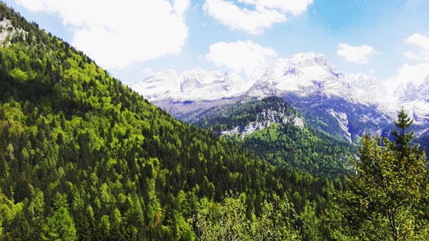 Val Rendena, Val di Genova e Vallesinella: vacanze in Trentino nel Parco Naturale Adamello Brenta
