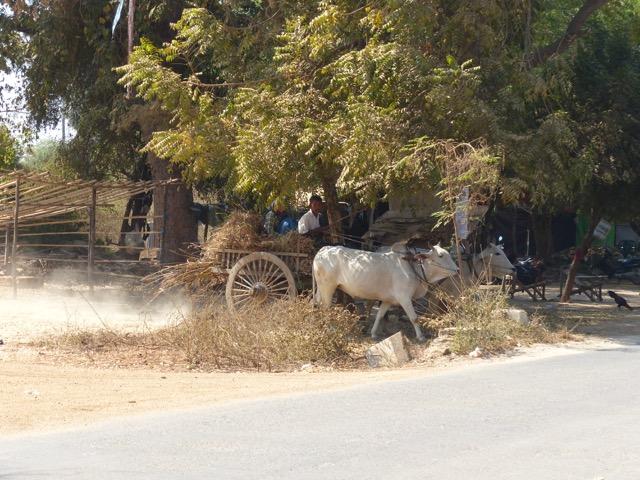 Viaggio in Birmania: le città da visitare