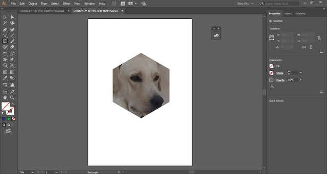 Clipping Mask in Illustrator