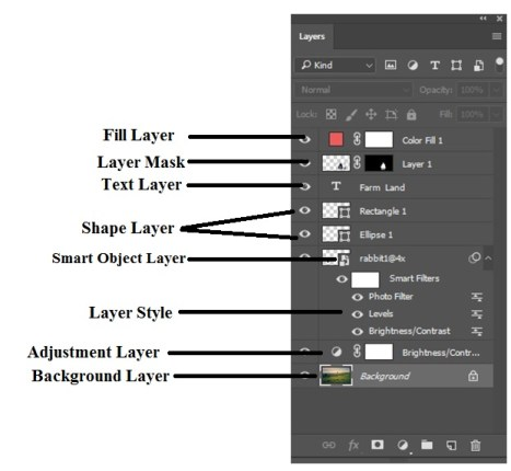 Types of Layers in Photoshop