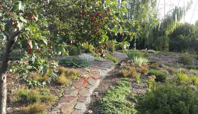 Slope Perennial Garden