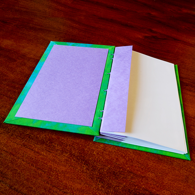 Journal- purple inserts