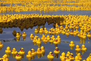 Rubber_Duck_Sea_by_whispering_hills (1)