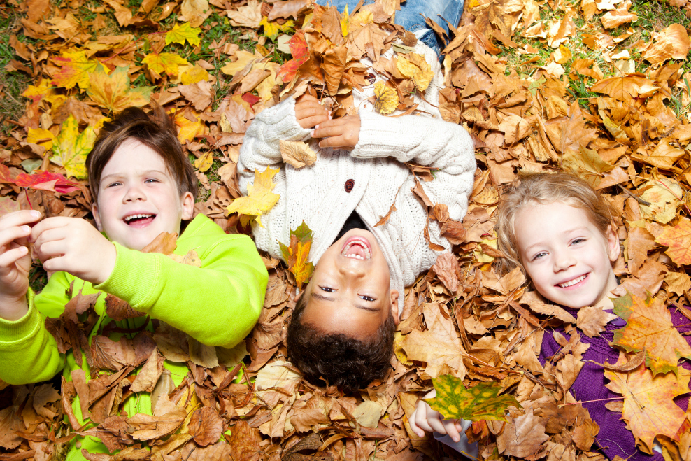 Image result for kids playing in leaves