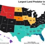 Largest Predator In Each U S State Vivid Maps