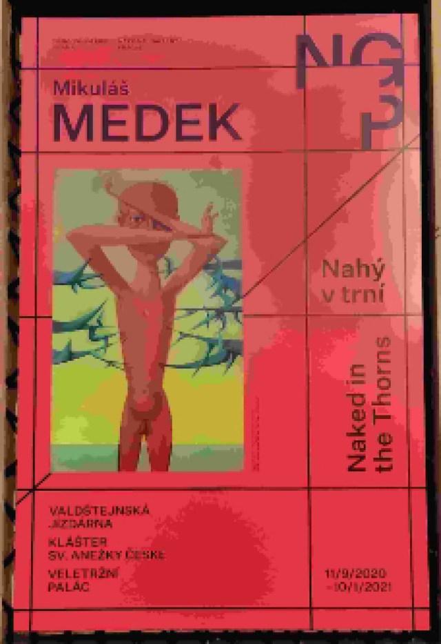 afiche exposicion Medek